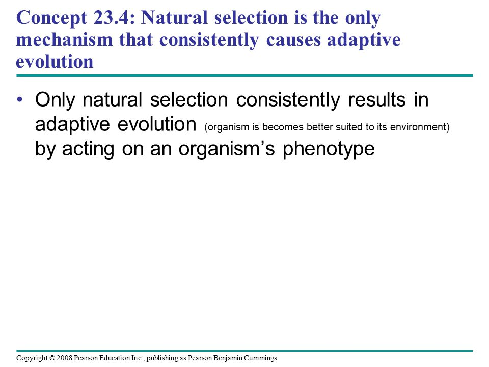 Copyright © 2008 Pearson Education Inc., publishing as Pearson Benjamin Cummings Only natural selection consistently results in adaptive evolution (organism is becomes better suited to its environment) by acting on an organism's phenotype Concept 23.4: Natural selection is the only mechanism that consistently causes adaptive evolution