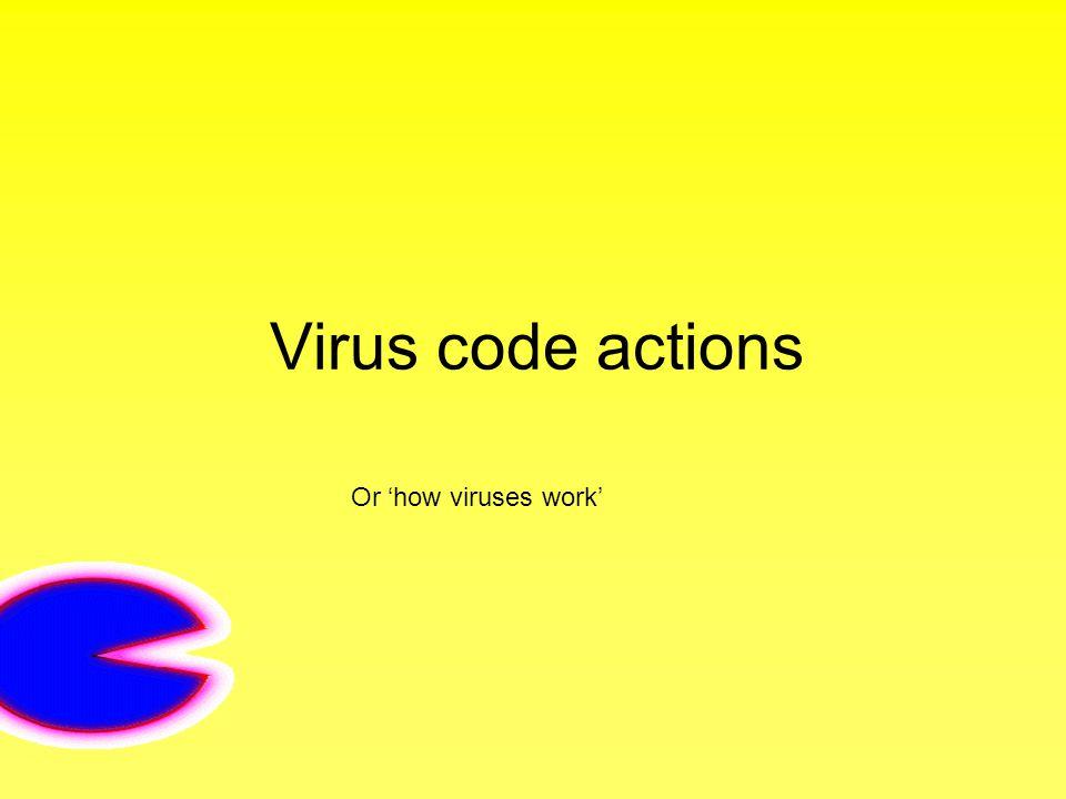 Virus code actions Or 'how viruses work'