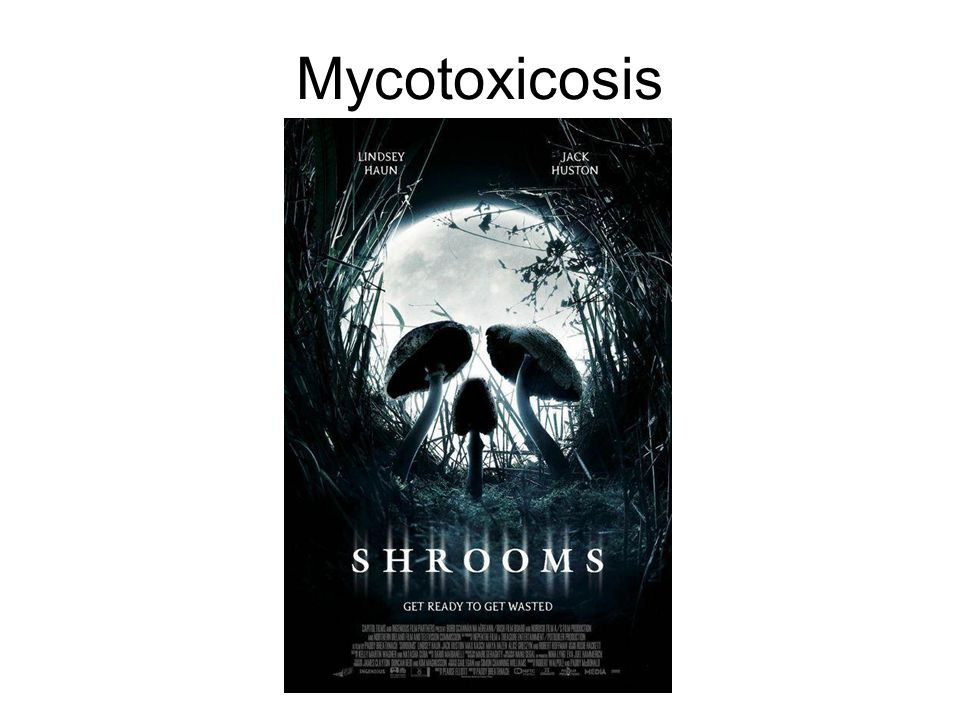 Mycotoxins Mycotoxins are low-molecular-weight secondary metabolites of fungi Often produced by food spoilage organisms or in basidiocarps (Mushrooms) mycotoxins are an important chronic dietary risk factor Aflatoxins - Aspergillus spp.; Citrinin – Penicillium spp.; Ergot Alkaloids – Claviceps spp.