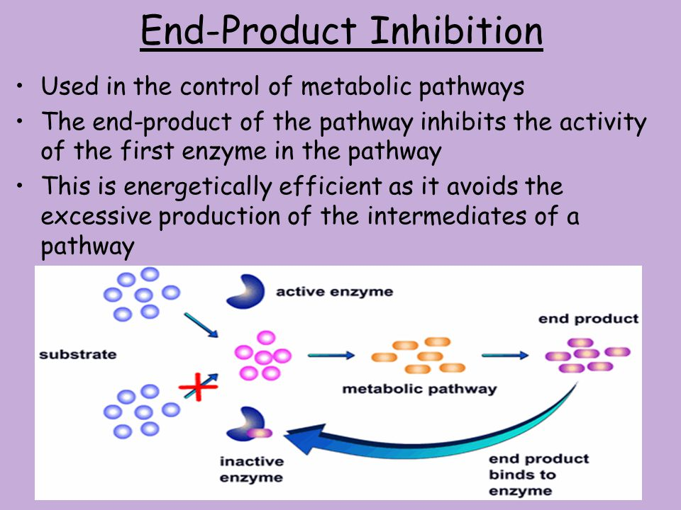 Control of a Pathway using its enzymes Metabolic pathways can be controlled by the switching on or off of the first enzyme in the pathway If the first
