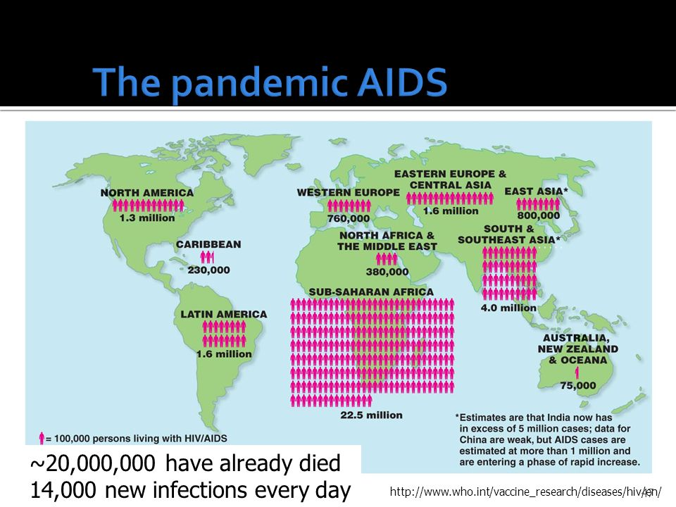 ~20,000,000 have already died 14,000 new infections every day http://www.who.int/vaccine_research/diseases/hiv/en/ 47