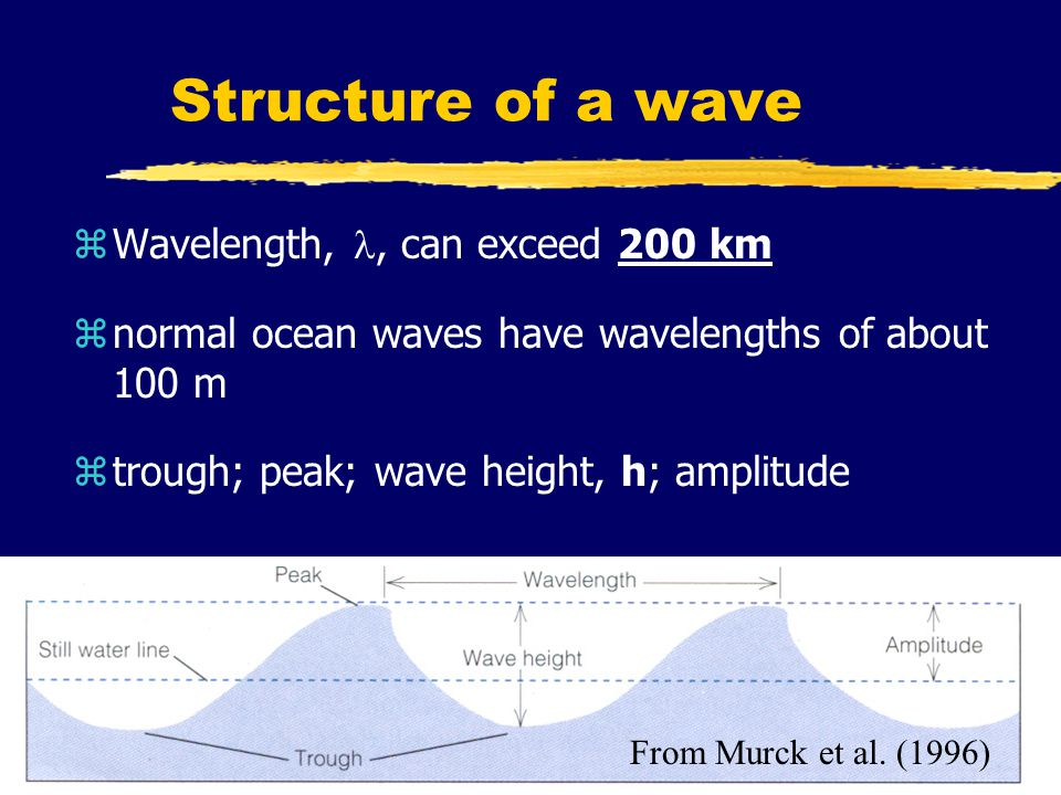Structure of a wave zWavelength,, can exceed 200 km znormal ocean waves have wavelengths of about 100 m ztrough; peak; wave height, h; amplitude From Murck et al.