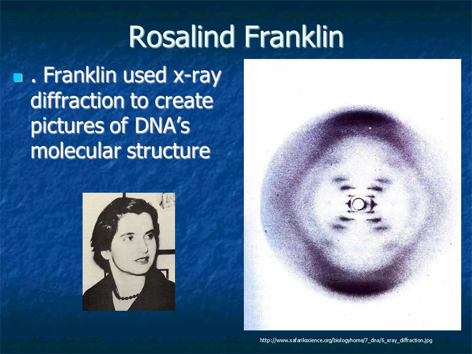 Rosalind Franklin. Franklin used x-ray diffraction to create pictures of DNA's molecular structure. Franklin used x-ray diffraction to create pictures