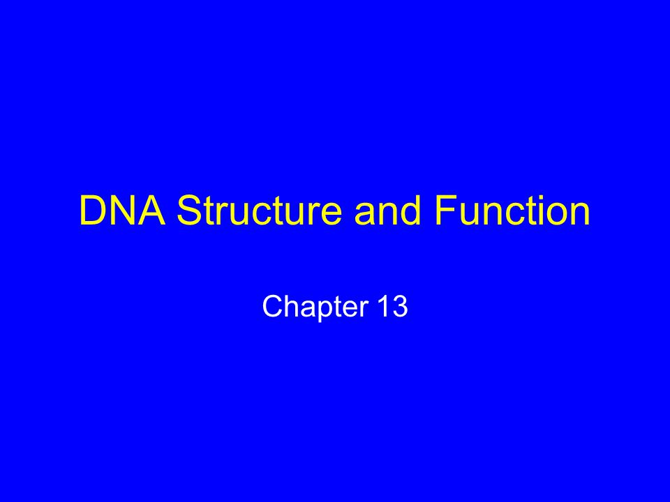 DNA Structure and Function Chapter 13