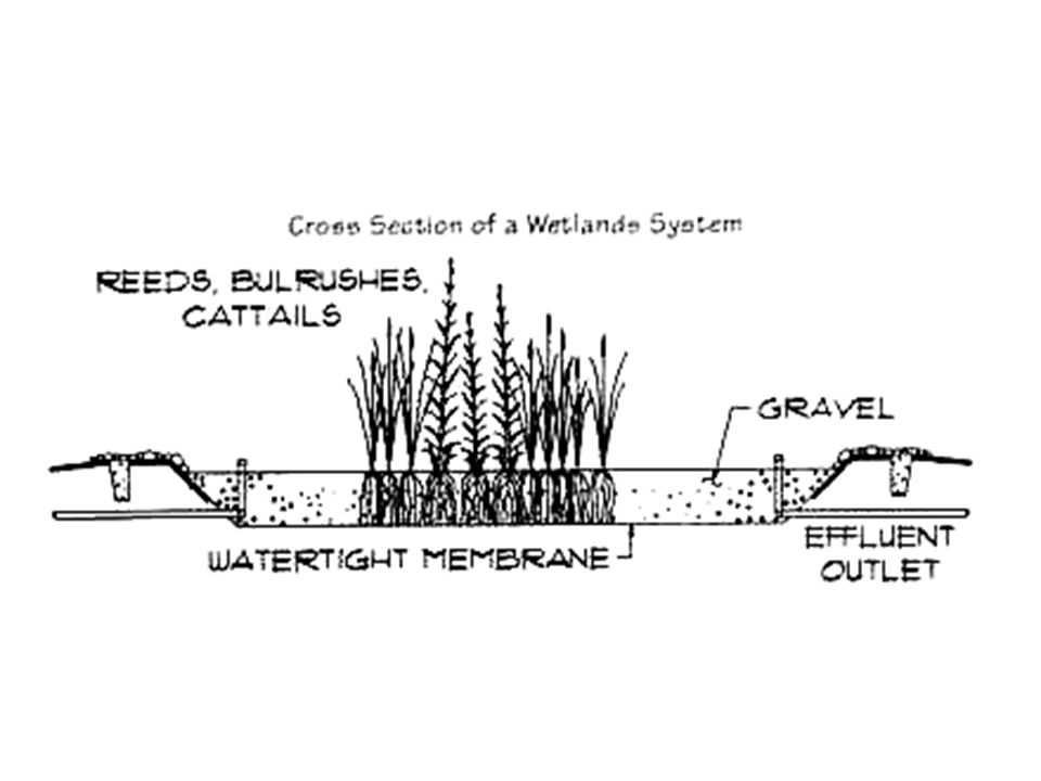 In Situ Treatments Treatments that are preformed in place - instead of pumping out the groundwater, chemicals, air etc.