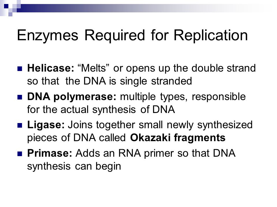 """Enzymes Required for Replication Helicase: """"Melts"""" or opens up the double strand so that the DNA is single stranded DNA polymerase: multiple types, re"""