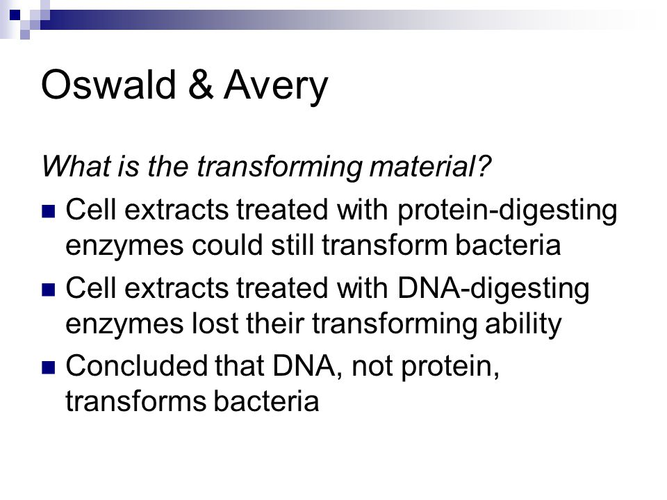 Oswald & Avery What is the transforming material? Cell extracts treated with protein-digesting enzymes could still transform bacteria Cell extracts tr