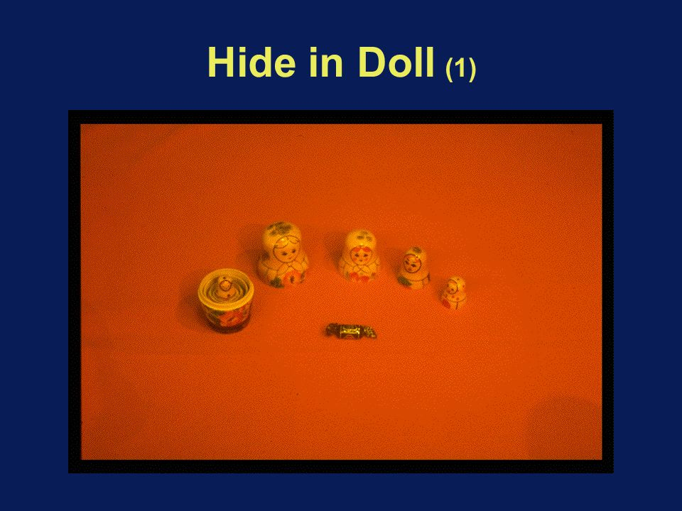 Hide in Doll (1)