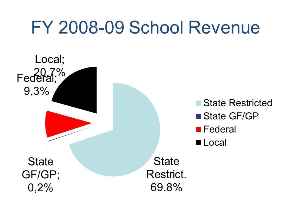 FY 2008-09 School Revenue