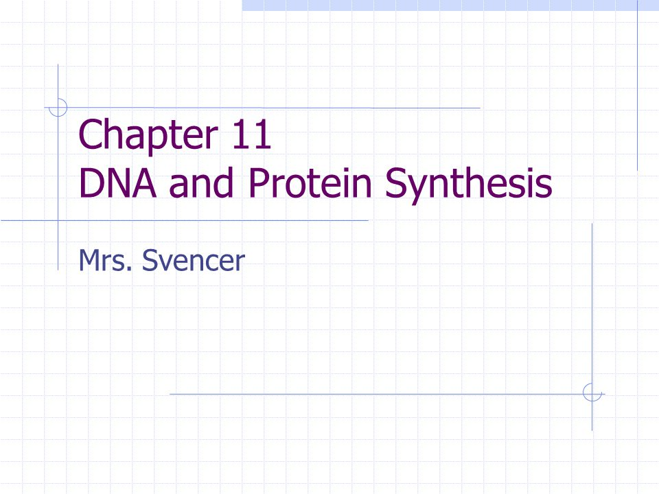 Chapter 11 DNA and Protein Synthesis Mrs. Svencer
