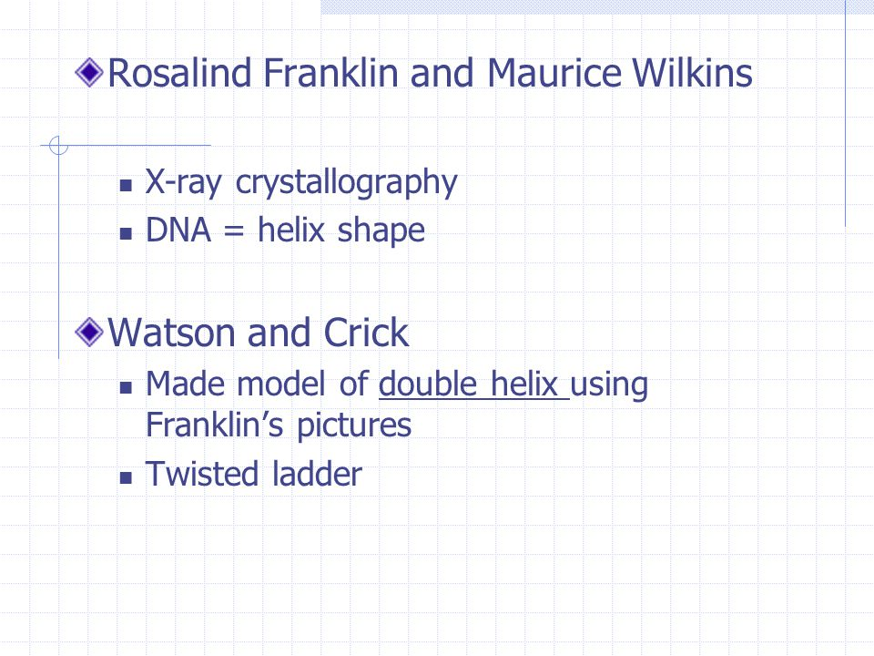 Rosalind Franklin and Maurice Wilkins X-ray crystallography DNA = helix shape Watson and Crick Made model of double helix using Franklin's pictures Twisted ladder