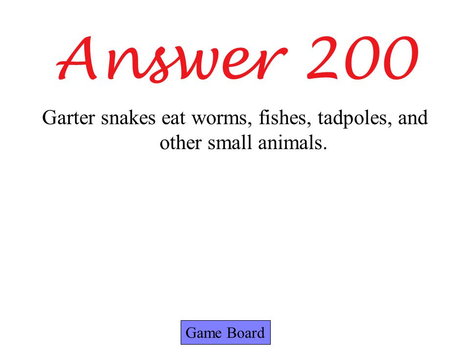 Answer 200 Game Board Garter snakes eat worms, fishes, tadpoles, and other small animals.