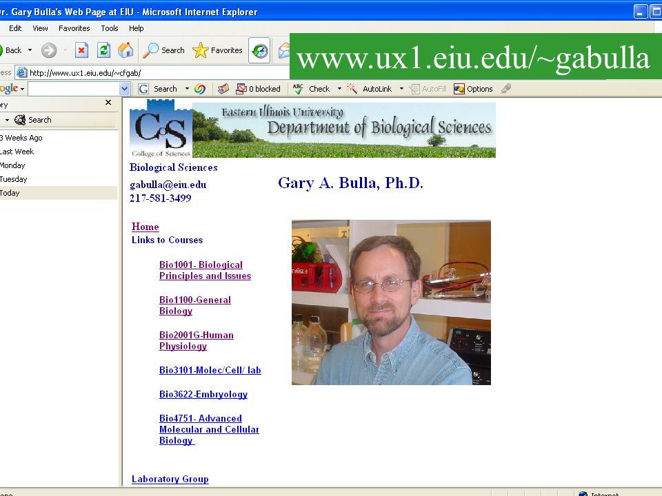 …and powerpoint files www.ux1.eiu.edu/~cfgab Lectures saved as Html files.. Click on Chapter 1