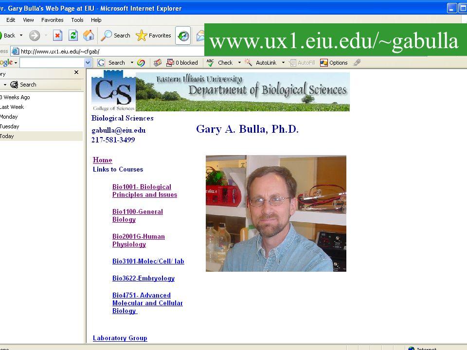www.ux1.eiu.edu/~gabulla