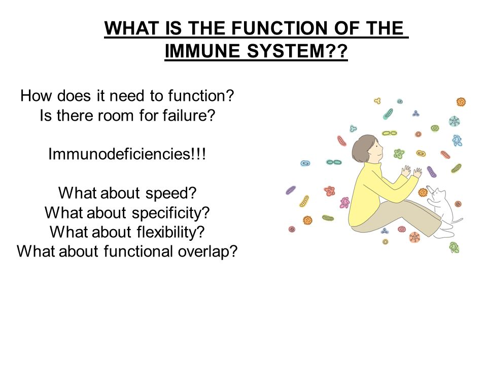 WHAT IS THE FUNCTION OF THE IMMUNE SYSTEM?.How does it need to function.