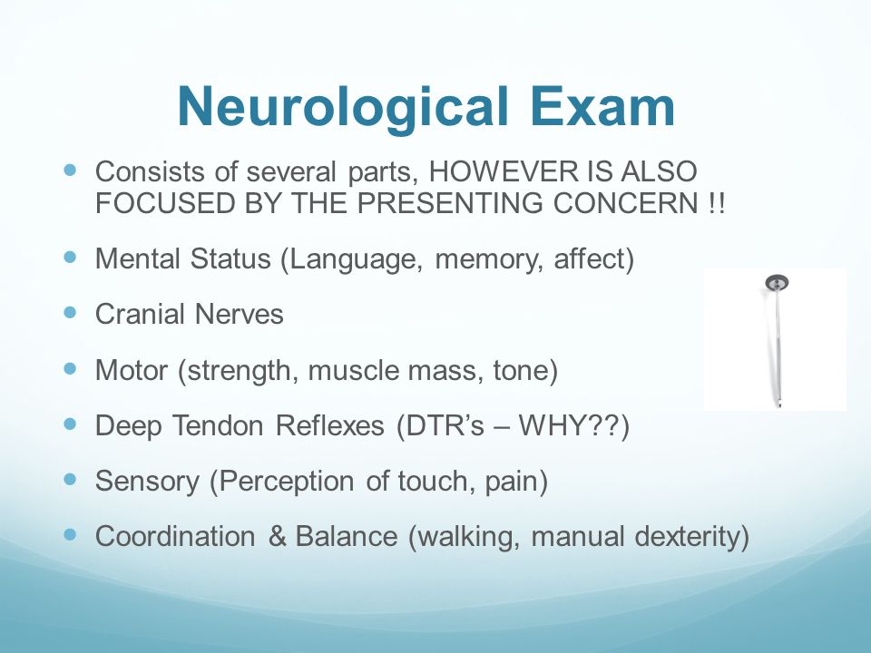 Neurological Exam Consists of several parts, HOWEVER IS ALSO FOCUSED BY THE PRESENTING CONCERN !.