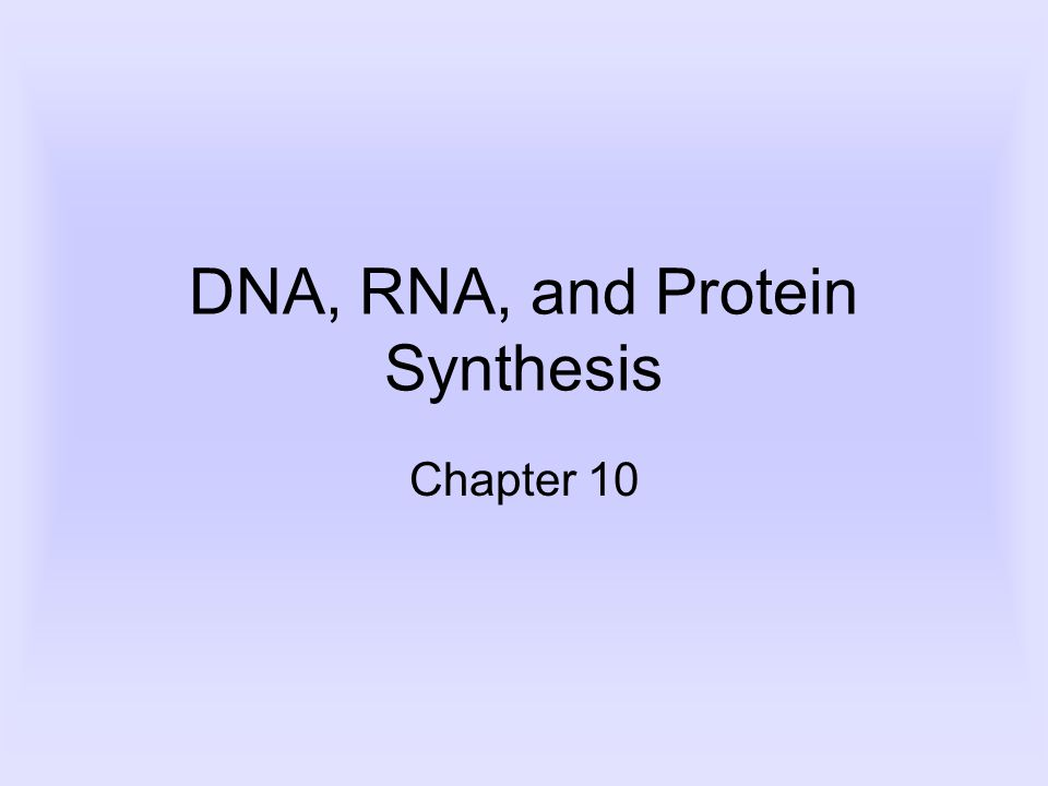 DNA, RNA, and Protein Synthesis Chapter 10