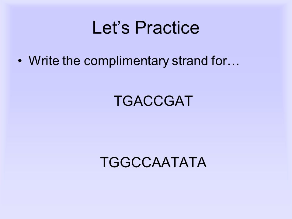 Let's Practice Write the complimentary strand for… TGACCGAT TGGCCAATATA