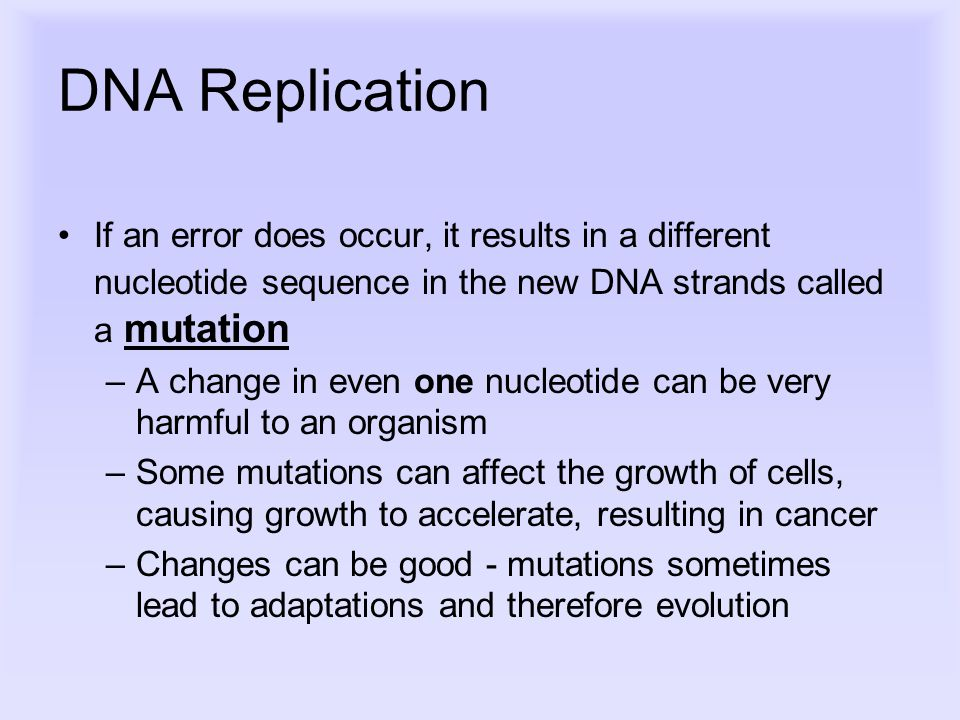 DNA Replication If an error does occur, it results in a different nucleotide sequence in the new DNA strands called a mutation –A change in even one nucleotide can be very harmful to an organism –Some mutations can affect the growth of cells, causing growth to accelerate, resulting in cancer –Changes can be good - mutations sometimes lead to adaptations and therefore evolution