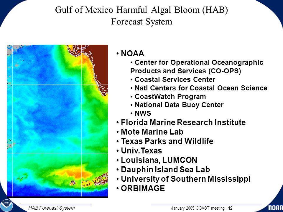 January 2005 COAST' meeting 12 HAB Forecast System Gulf of Mexico Harmful Algal Bloom (HAB) Forecast System A Federal/State/Commercial Collaboration NOAA Center for Operational Oceanographic Products and Services (CO-OPS) Coastal Services Center Natl Centers for Coastal Ocean Science CoastWatch Program National Data Buoy Center NWS Florida Marine Research Institute Mote Marine Lab Texas Parks and Wildlife Univ.Texas Louisiana, LUMCON Dauphin Island Sea Lab University of Southern Mississippi ORBIMAGE