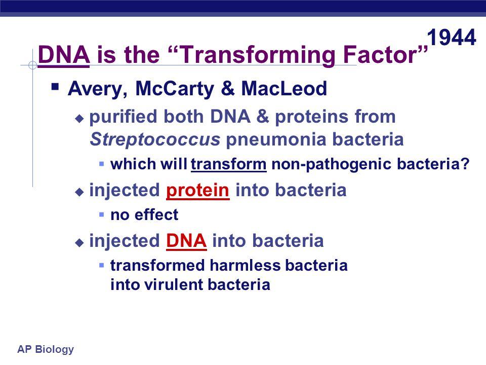 AP Biology The Transforming Factor Transformation.