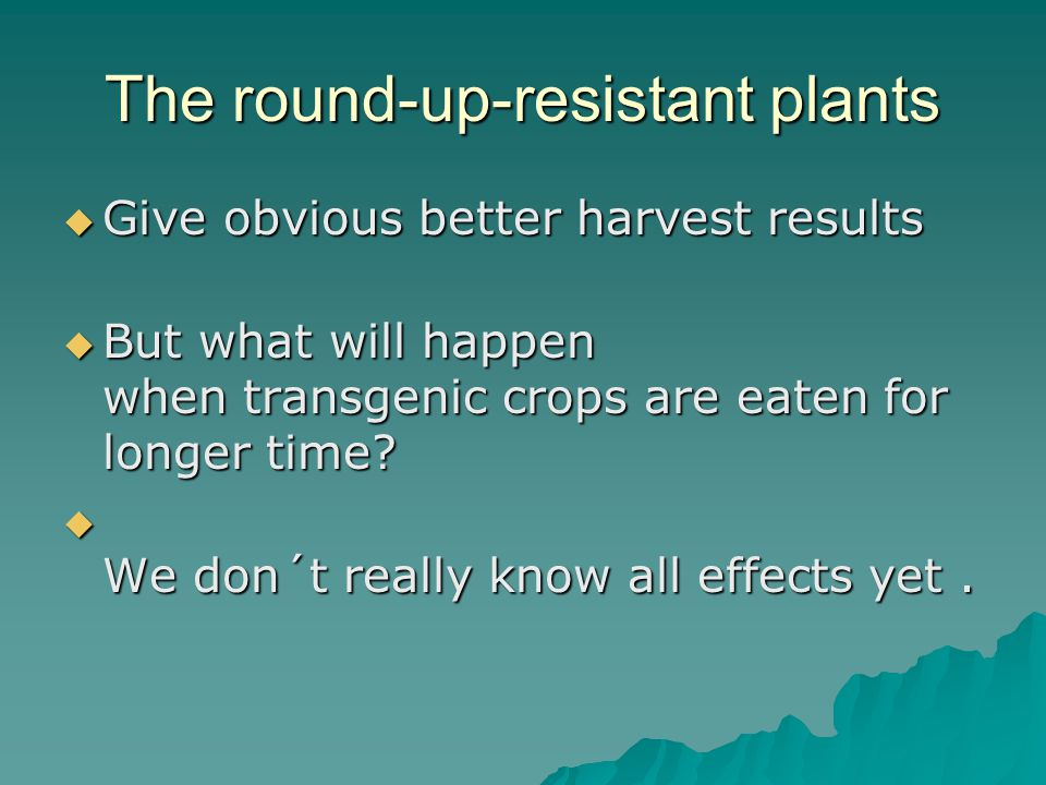 The round-up-resistant plants  Give obvious better harvest results  But what will happen when transgenic crops are eaten for longer time.