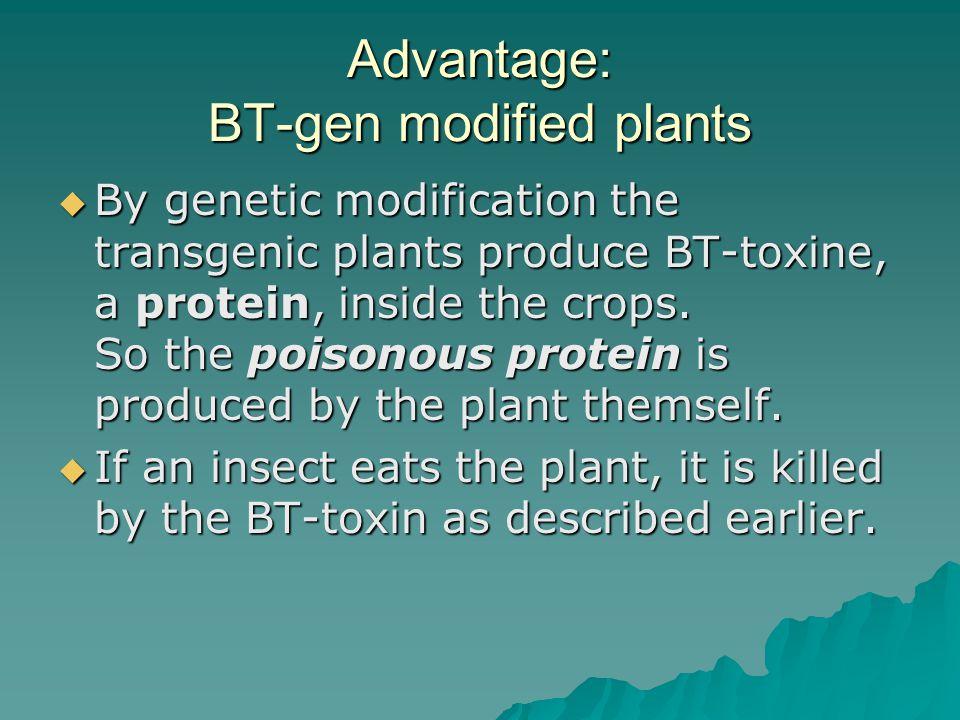 Advantage: BT-gen modified plants  By genetic modification the transgenic plants produce BT-toxine, a protein, inside the crops.