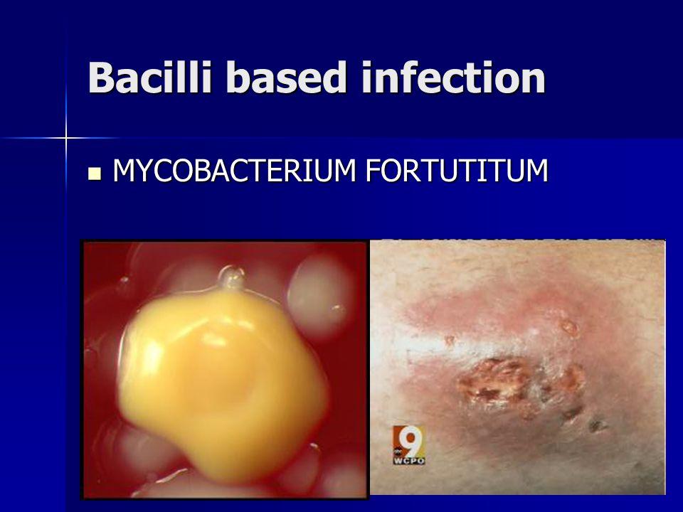 Bacilli based infection MYCOBACTERIUM FORTUTITUM MYCOBACTERIUM FORTUTITUM