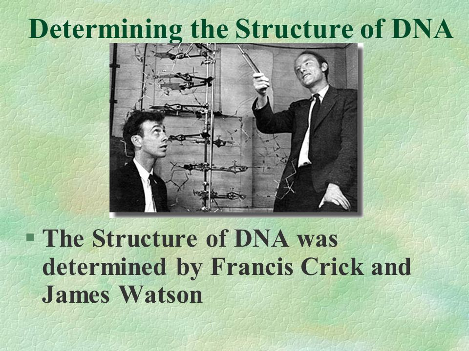 What did this experiment show? DNA is the molecule that contains genetic info.
