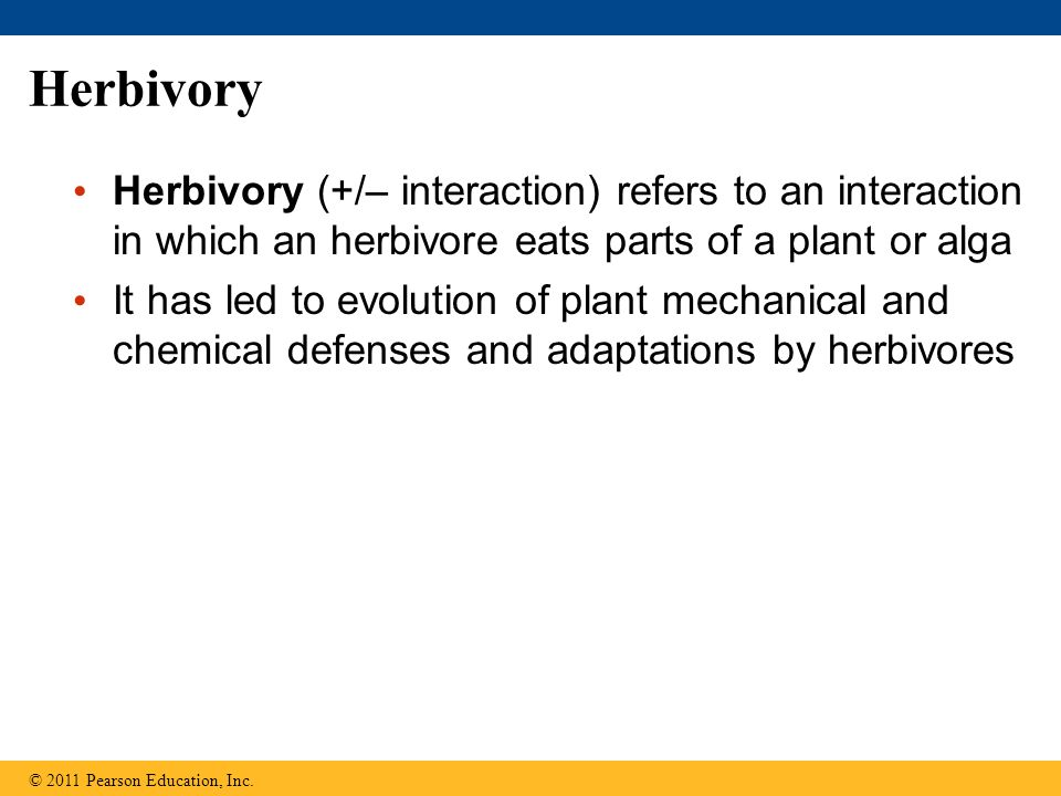 Herbivory Herbivory (+/– interaction) refers to an interaction in which an herbivore eats parts of a plant or alga It has led to evolution of plant mechanical and chemical defenses and adaptations by herbivores © 2011 Pearson Education, Inc.