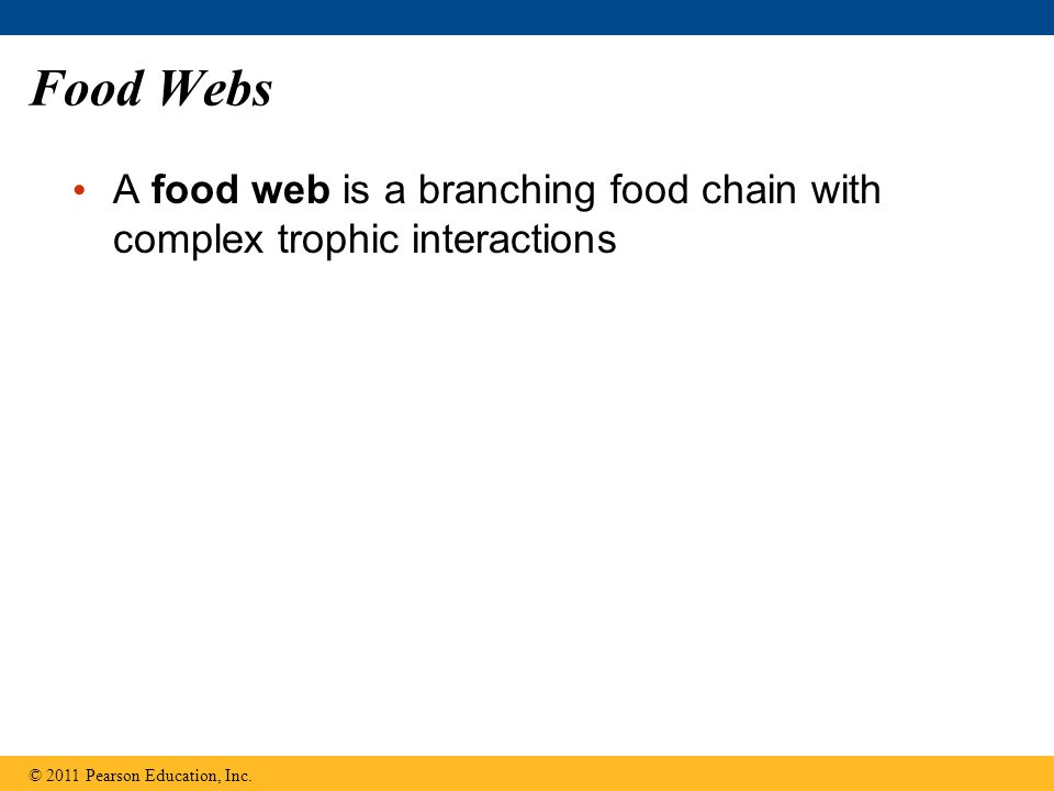 Food Webs A food web is a branching food chain with complex trophic interactions © 2011 Pearson Education, Inc.