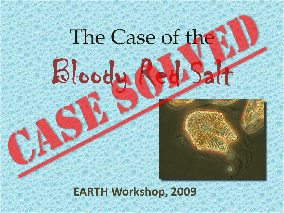 EARTH Workshop, 2009 The Case of the Bloody Red Salt