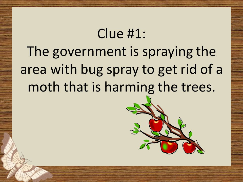 Clue #1: The government is spraying the area with bug spray to get rid of a moth that is harming the trees.