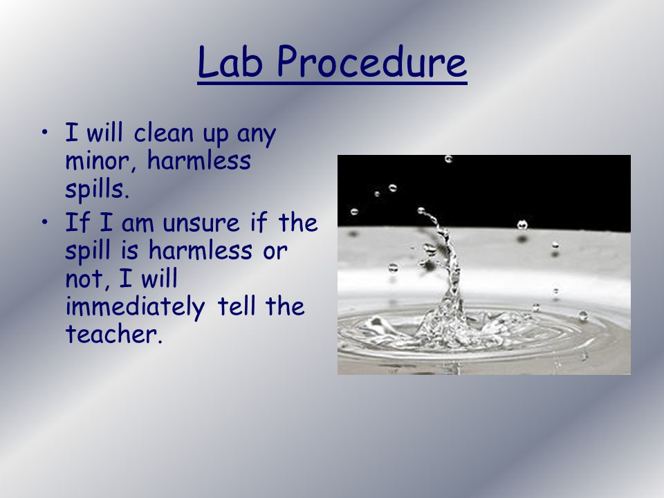 Lab Procedure I will clean up any minor, harmless spills.