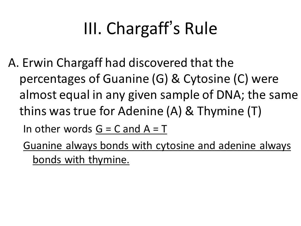 III. Chargaff's Rule A.
