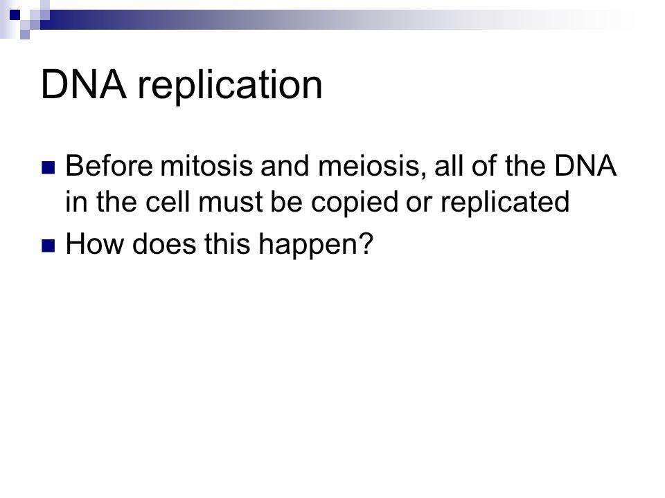 DNA replication Before mitosis and meiosis, all of the DNA in the cell must be copied or replicated How does this happen?