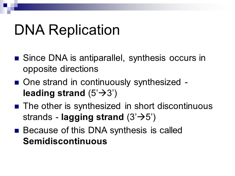 Since DNA is antiparallel, synthesis occurs in opposite directions One strand in continuously synthesized - leading strand (5'  3') The other is synt