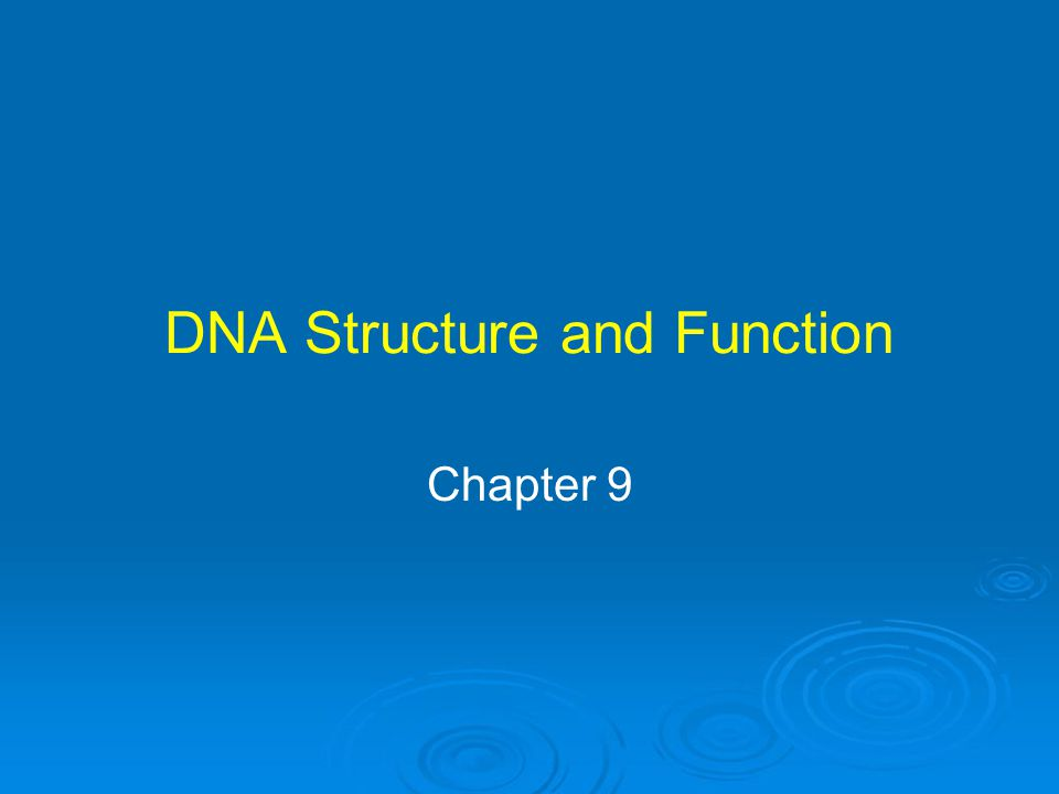DNA Structure and Function Chapter 9