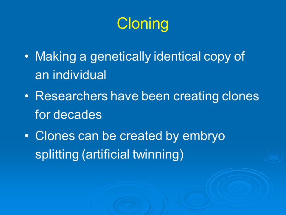 Cloning Making a genetically identical copy of an individual Researchers have been creating clones for decades Clones can be created by embryo splitti