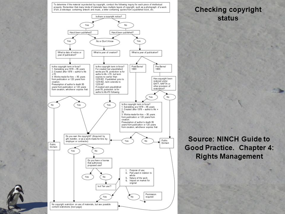 Source: NINCH Guide to Good Practice.Chapter 4: Rights Management Copyright: Lauryn G.