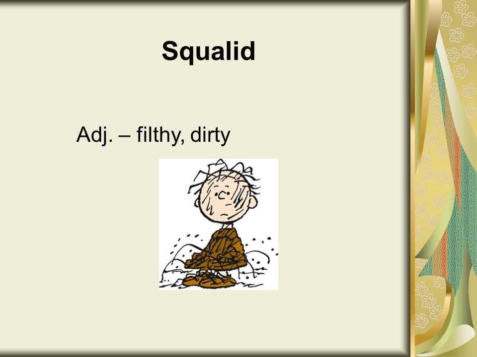 Squalid Adj. – filthy, dirty