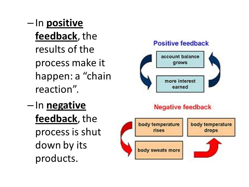 """– In positive feedback, the results of the process make it happen: a """"chain reaction"""". – In negative feedback, the process is shut down by its product"""