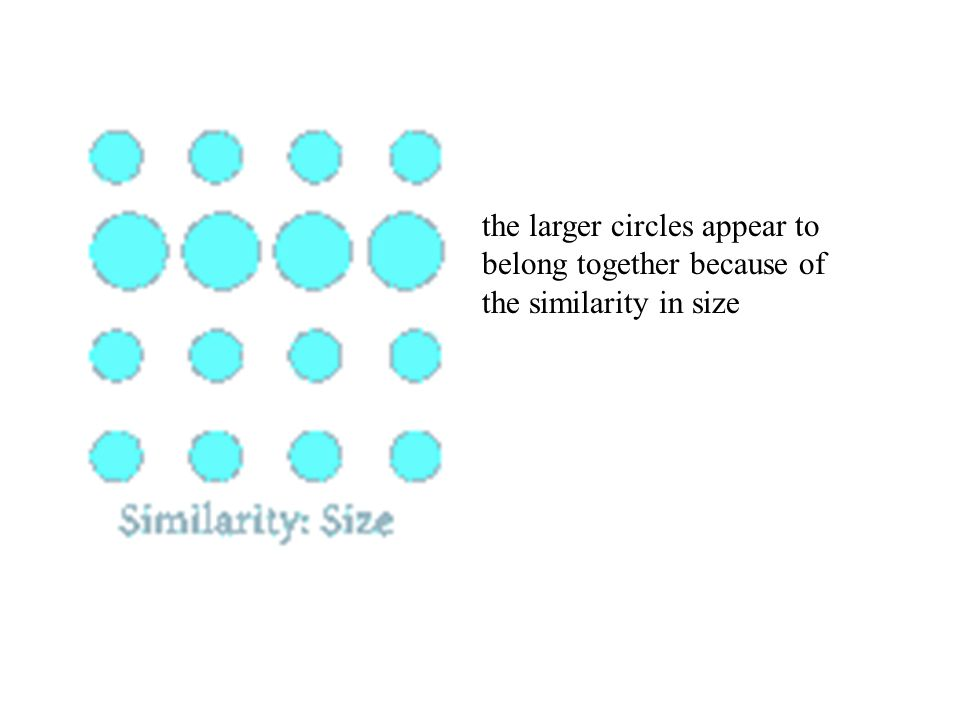 the larger circles appear to belong together because of the similarity in size