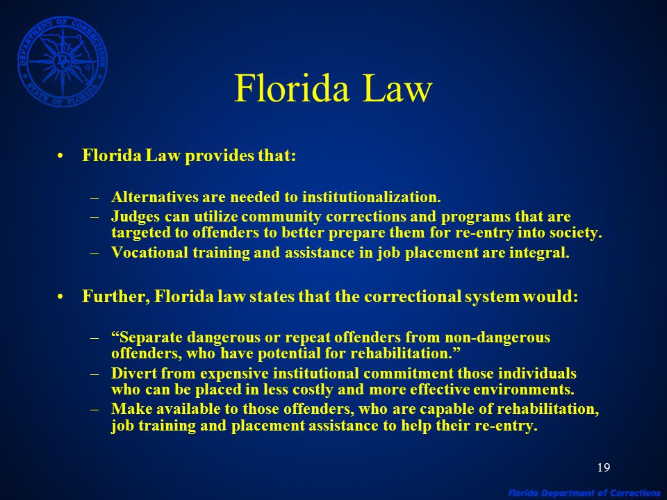 19 Florida Law Florida Law provides that: –Alternatives are needed to institutionalization.