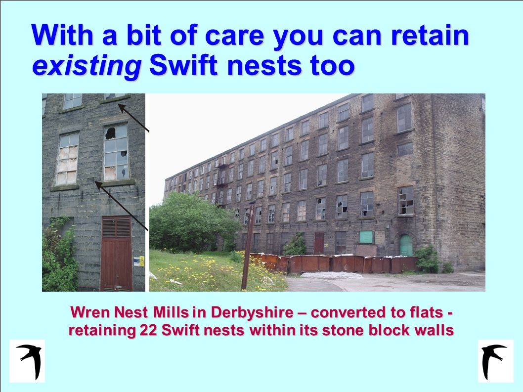 With a bit of care you can retain existing Swift nests too Wren Nest Mills in Derbyshire – converted to flats - retaining 22 Swift nests within its stone block walls