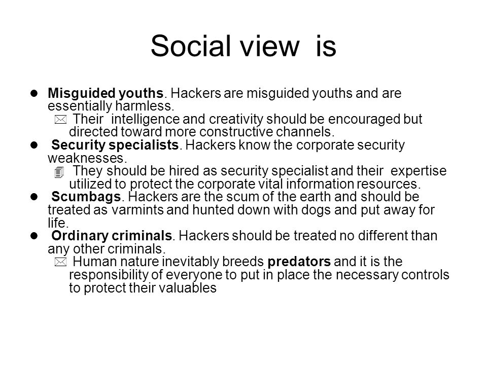 Social view is l Misguided youths. Hackers are misguided youths and are essentially harmless.
