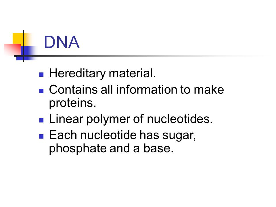 DNA Hereditary material. Contains all information to make proteins.