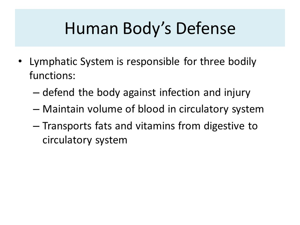 Human Body's Defense Lymphatic System is responsible for three bodily functions: – defend the body against infection and injury – Maintain volume of blood in circulatory system – Transports fats and vitamins from digestive to circulatory system