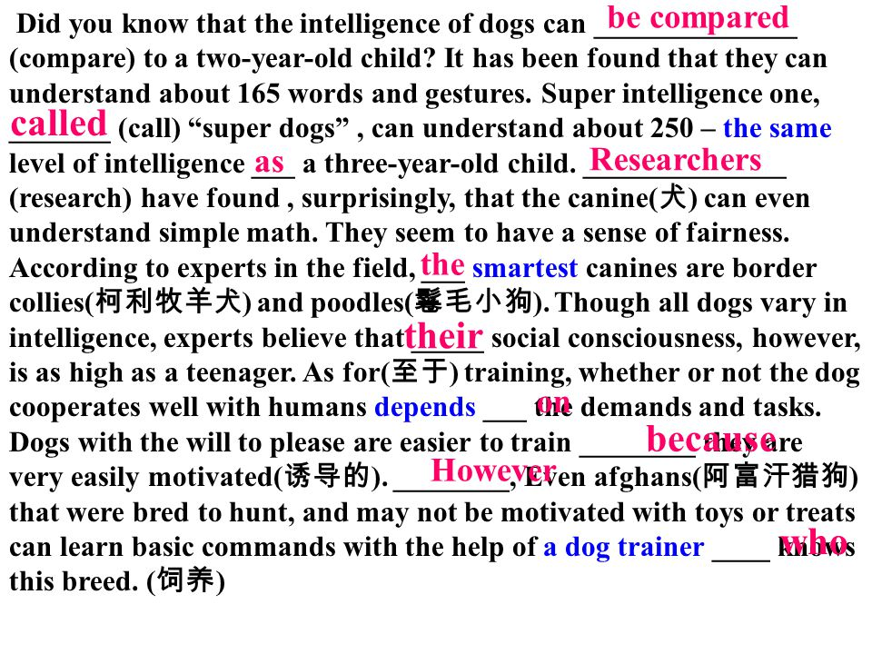 Did you know that the intelligence of dogs can ______________ (compare) to a two-year-old child? It has been found that they can understand about 165