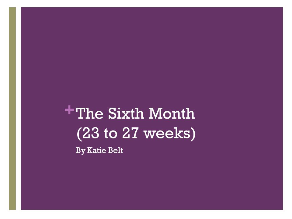 + The Sixth Month (23 to 27 weeks) By Katie Belt